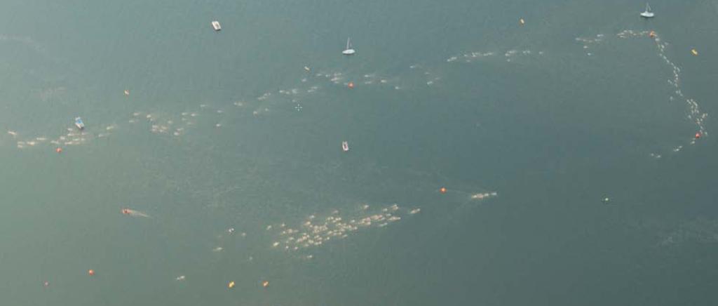 Overhead of Olympic Swim