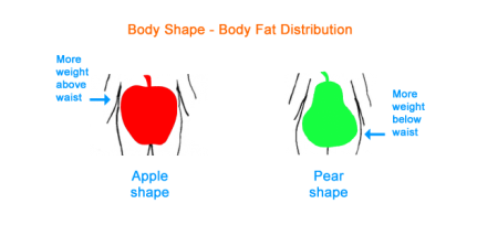 body_shape_2